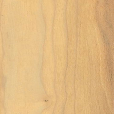 Bruce Chelsea Park Timbered Walnut (Sample) Laminate Flooring