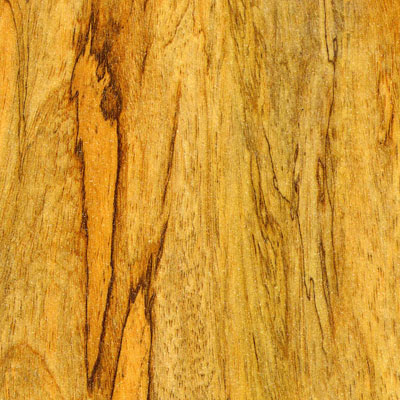 Stepco Vizcaya 8.3MM Myrtle Laminate Flooring