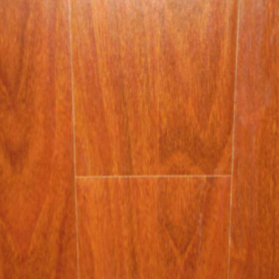 Nuvelle Nuvelle Handscraped Rosewood (Sample) Laminate Flooring