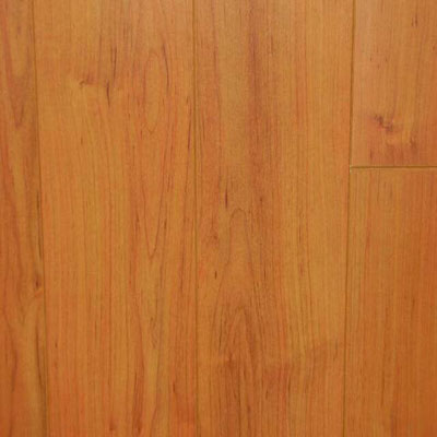 Nuvelle Nuvelle 4 Sided Bevel Pacific Birch (Sample) Laminate Flooring