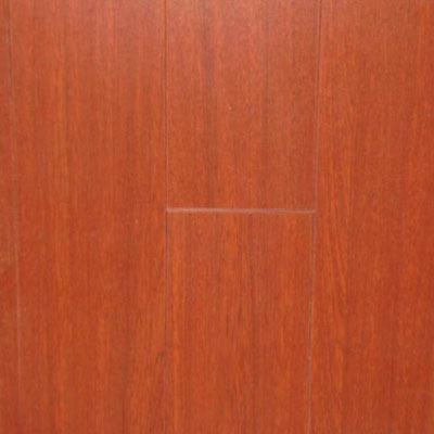 Nuvelle Nuvelle 4 Sided Bevel Red Sandal (Sample) Laminate Flooring