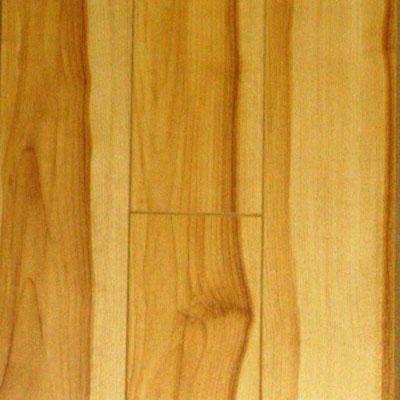 Nuvelle Nuvelle 4 Sided Micro Bevel Rustic Ash (Sample) Laminate Flooring