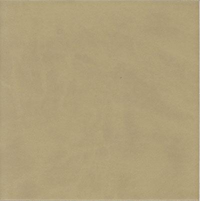 EcoDomo Echelon Tile 18x18 Buffalo Sage Leather Flooring