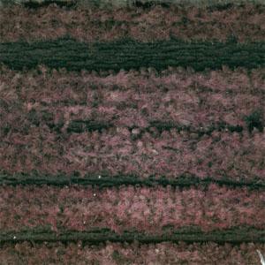 Roppe Rop-Cord Tile Vulcanized 12 x 12 Crimson Rubber Flooring