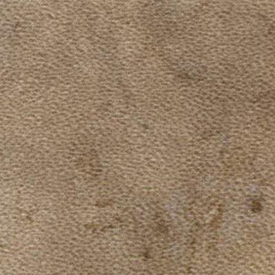 Amtico Spacia Stone 12 x 18 Fossil Stone Vinyl Flooring