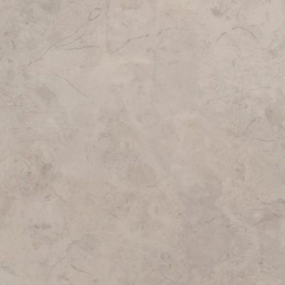 Amtico Spacia Stone 7.25 x 48 Bottocino Grey Vinyl Flooring