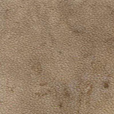 Amtico Spacia Stone 7.25 x 48 Fossil Stone Vinyl Flooring