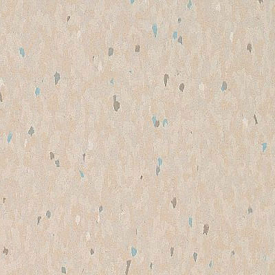 Armstrong Commercial Tile - Companion Square Multi Ecru (Sample) Vinyl Flooring