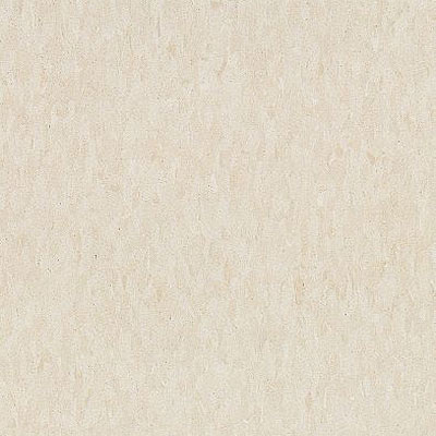 Armstrong Commercial Tile - Imperial Texture Antique White (Sample) Vinyl Flooring