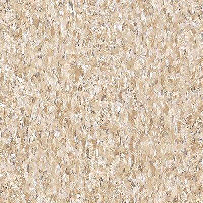 Armstrong Commercial Tile - Imperial Texture Cottage Tan (Sample) Vinyl Flooring