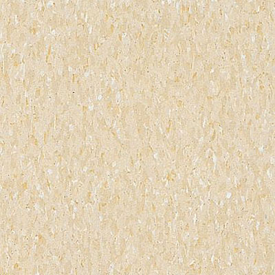 Armstrong Commercial Tile - Imperial Texture Desert Beige (Sample) Vinyl Flooring