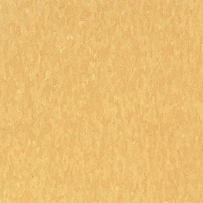 Armstrong Commercial Tile - Imperial Texture Golden (Sample) Vinyl Flooring