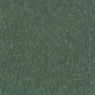 Armstrong Commercial Tile - Imperial Texture Greenery (Sample) Vinyl Flooring