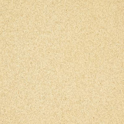 Armstrong Inlaid (Felt Back) - Medintech Tandem Golden Glow (Sample) Vinyl Flooring