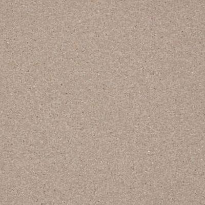 Armstrong Inlaid (Felt Back) - Medintech Tandem Pumice Stone (Sample) Vinyl Flooring