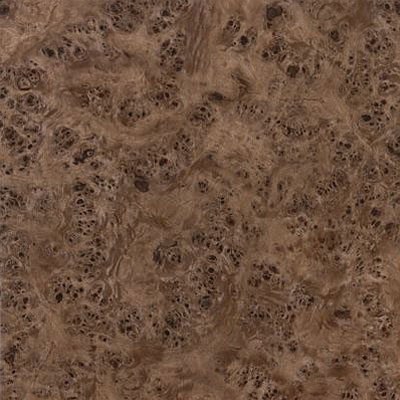 Armstrong Mystix 16 x 16 Burl Wood Walnut (Sample) Vinyl Flooring