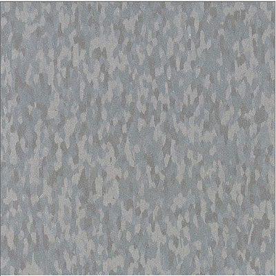 Armstrong Commercial Tile - Static Dissipative Tile (SDT) Fossil Gray (Sample) Vinyl Flooring