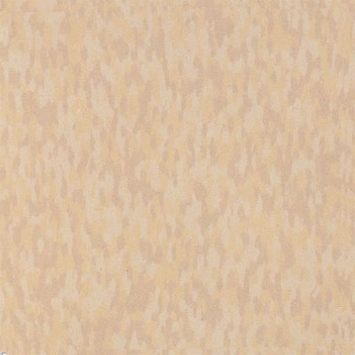 Armstrong Commercial Tile - Static Dissipative Tile (SDT) Sandstone Beige (Sample) Vinyl Flooring