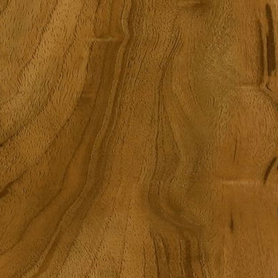 Armstrong Luxe Plank Collection - Best Exotic Fruitwood - Honey Spice (Sample) Vinyl Flooring