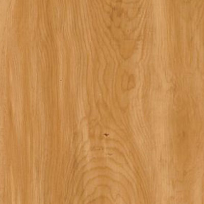 Armstrong Natural Personality 6 x 36 Amber Pine (Sample) Vinyl Flooring