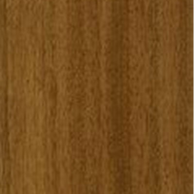 Armstrong Natural Personality 6 x 36 Autumn Sapelli (Sample) Vinyl Flooring
