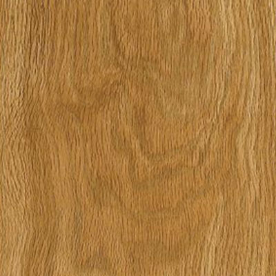 Armstrong Natural Personality 6 x 36 Golden Oak (Sample) Vinyl Flooring
