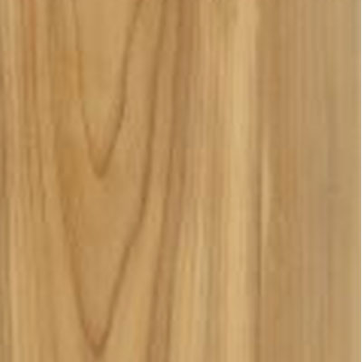 Armstrong Natural Personality 6 x 36 Natural Elwood (Sample) Vinyl Flooring