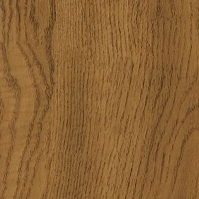 Armstrong Natural Personality 6 x 36 Warm Oak (Sample) Vinyl Flooring