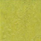 Forbo Marmoleum Modular 20x20 Chartreuse Vinyl Flooring