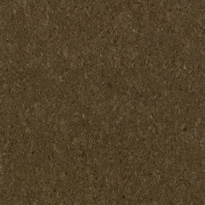 Mannington Progressions Toffee (Sample) Vinyl Flooring