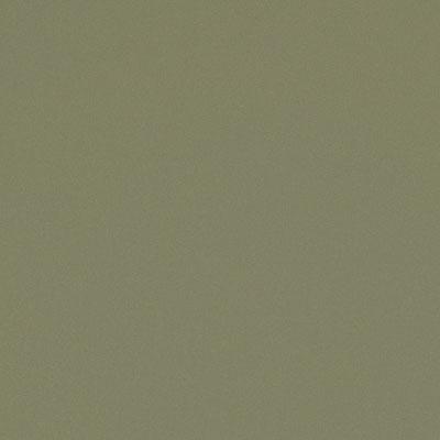 Forbo G3 Walton Cirrus Rosemary Green Vinyl Flooring