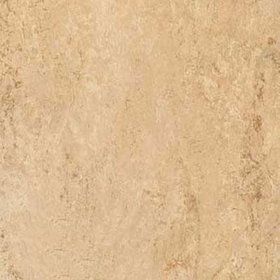 Forbo Marmoleum Composition Tile (MCT) Barley Vinyl Flooring
