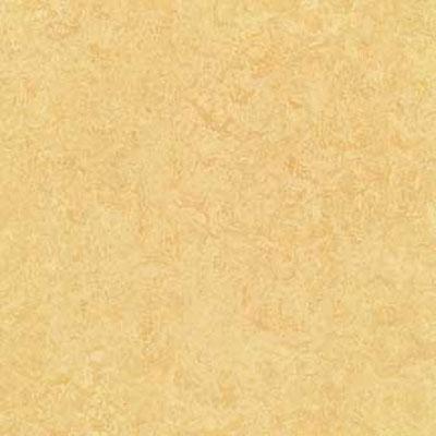 Forbo Marmoleum Composition Tile (MCT) Butter Vinyl Flooring