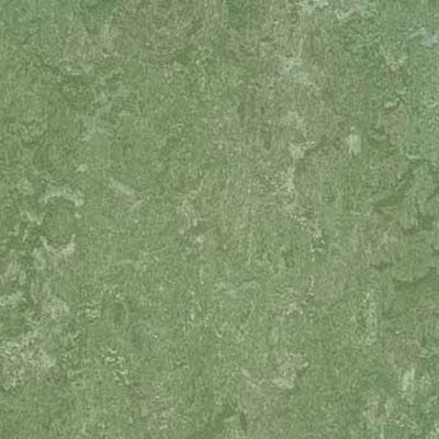 Forbo Marmoleum Composition Tile (MCT) Jade Vinyl Flooring