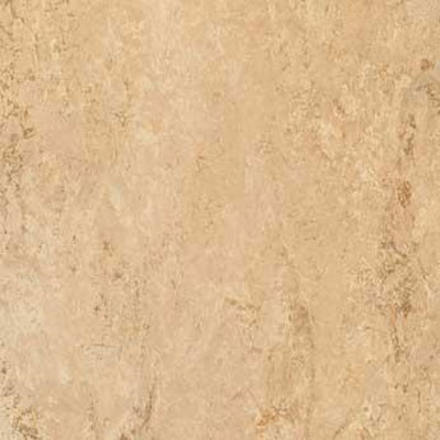 Forbo G3 Marmoleum Dual Tile 13 x 13 Barley Vinyl Flooring