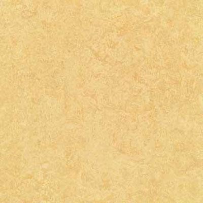 Forbo G3 Marmoleum Dual Tile 20 x 20 Butter Vinyl Flooring