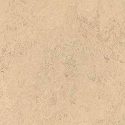 Forbo G3 Marmoleum Dual Tile 20 x 20 Calico Vinyl Flooring