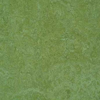 Forbo G3 Marmoleum Dual Tile 13 x 13 Emerald Vinyl Flooring