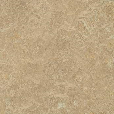 Forbo G3 Marmoleum Dual Tile 13 x 13 Forest Ground Vinyl Flooring