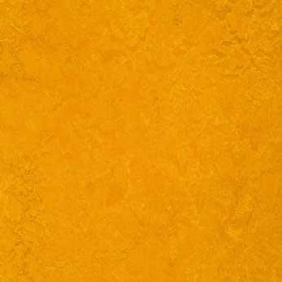 Forbo G3 Marmoleum Dual Tile 20 x 20 Golden Sunset Vinyl Flooring