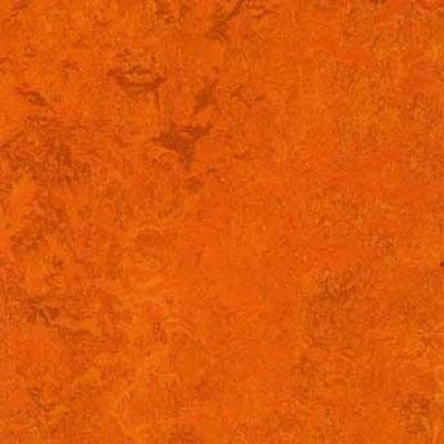 Forbo G3 Marmoleum Dual Tile 13 x 13 Kyoto Vinyl Flooring
