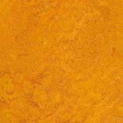 Forbo G3 Marmoleum Dual Tile 13 x 13 Marigold Vinyl Flooring