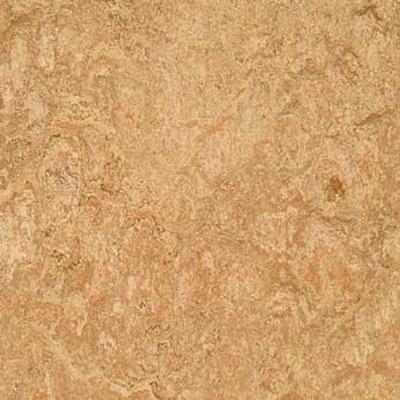 Forbo G3 Marmoleum Dual Tile 13 x 13 Shell Vinyl Flooring