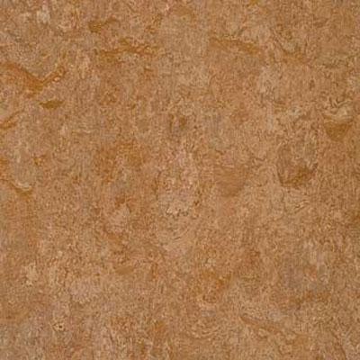 Forbo G3 Marmoleum Dual Tile 13 x 13 Shitake Vinyl Flooring