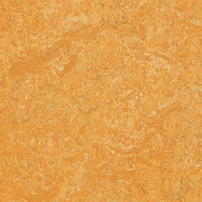 Forbo G3 Marmoleum Fresco Golden Saffron Vinyl Flooring