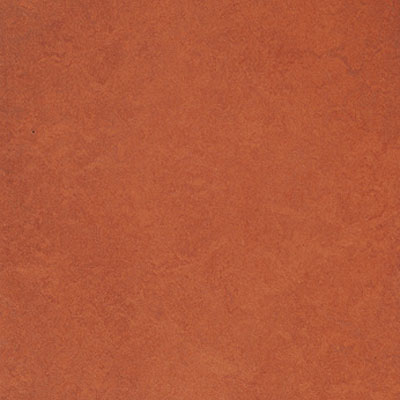 Forbo G3 Marmoleum Fresco Red Copper Vinyl Flooring