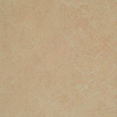 Forbo G3 Marmoleum Fresco Silver Birch Vinyl Flooring