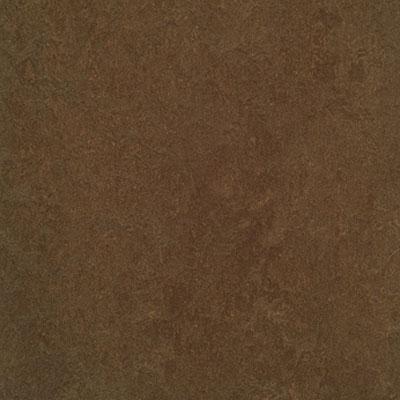 Forbo G3 Marmoleum Fresco Walnut Vinyl Flooring