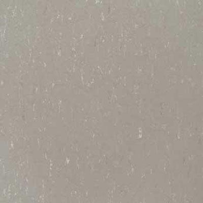 Forbo G3 Marmoleum Piano Warm Grey Vinyl Flooring