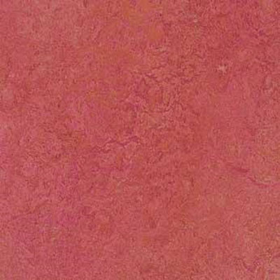 Forbo G3 Marmoleum Real 1/10 Blush Vinyl Flooring